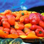 Peru Yemekleri – En İyi 5 Peru Yemeği